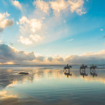 Picture of people enjoying an Outer Banks horseback riding tour.